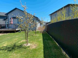 Photo 41: 7432 179 Avenue in Edmonton: Zone 28 House for sale : MLS®# E4236126