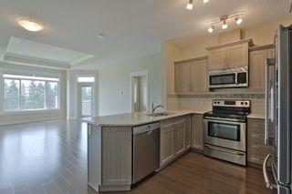 Photo 9: 412B 511 QUEEN Street: Spruce Grove Condo for sale : MLS®# E4255260