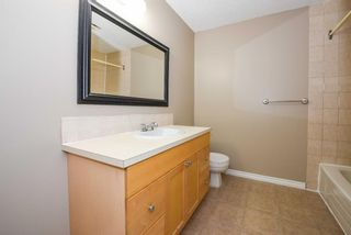 Photo 31: 40 Whitefield Crescent NE in Calgary: Whitehorn Detached for sale : MLS®# A1139313