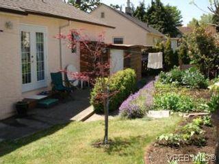 Photo 10: 1590 Bay St in VICTORIA: Vi Oaklands House for sale (Victoria)  : MLS®# 504668