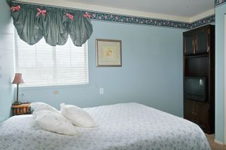 Photo 3: 23146 PEACH TREE Court in Maple Ridge: East Central House for sale : MLS®# V920655