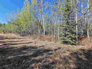 """Photo 3: 12925 CHERRY Road: Charlie Lake Land for sale in """"CHARLIE LAKE"""" (Fort St. John (Zone 60))  : MLS®# R2519694"""