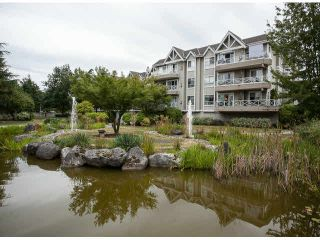 """Photo 19: 201 5556 201A Street in Langley: Langley City Condo for sale in """"Michaud Gardens"""" : MLS®# F1421361"""