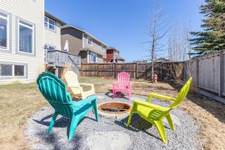 Photo 47: 100 Thornfield Close SE: Airdrie Detached for sale : MLS®# A1094943