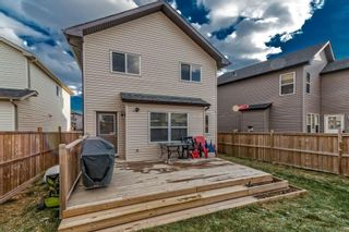 Photo 31: 30 COVEPARK Rise NE in Calgary: Coventry Hills House for sale : MLS®# C4163542