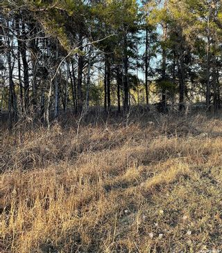 Photo 4: Over 1 acre lots in Hudson Bay: Lot/Land for sale : MLS®# SK850476