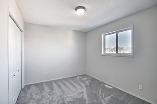 Photo 22: 253 Elgin Way SE in Calgary: McKenzie Towne Detached for sale : MLS®# A1087799