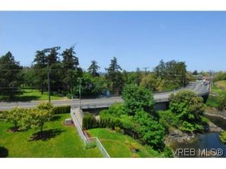 Photo 11: 403 1085 Tillicum Rd in VICTORIA: Es Kinsmen Park Condo for sale (Esquimalt)  : MLS®# 504110