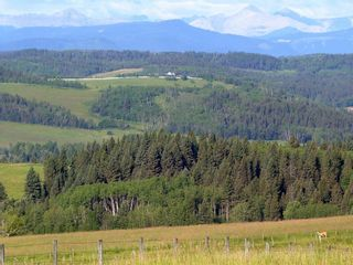 Photo 7: 224061 274 Avenue W: Rural Foothills County Residential Land for sale : MLS®# A1095002