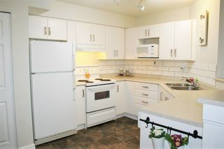 "Photo 8: 305 33599 2ND Avenue in Mission: Mission BC Condo for sale in ""Stave Lake Landing"" : MLS®# R2243401"