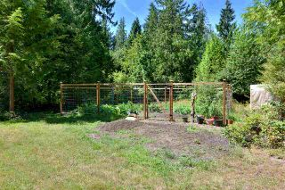 Photo 19: 6139 REEVES Road in Sechelt: Sechelt District House for sale (Sunshine Coast)  : MLS®# R2553170