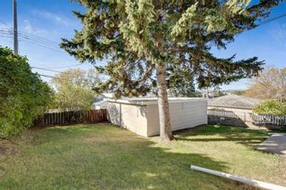 Photo 21: 2815 11 Avenue SE in Calgary: Albert Park/Radisson Heights Detached for sale : MLS®# A1149863