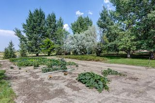 Photo 43: 174008B Range Road 214: Rural Vulcan County Detached for sale : MLS®# A1153640