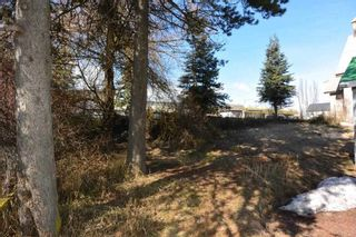 """Photo 35: 1673 16 Highway: Telkwa House for sale in """"Downtown Residential Commercial Mixed Use"""" (Smithers And Area (Zone 54))  : MLS®# R2557368"""