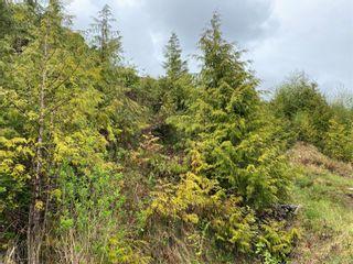Photo 5: 1091 Front St in : PA Salmon Beach Land for sale (Port Alberni)  : MLS®# 881863