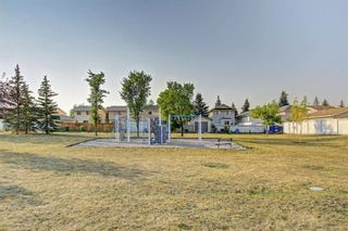 Photo 47: 25 Martinview Crescent NE in Calgary: Martindale Detached for sale : MLS®# A1107227
