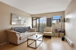 """Photo 6: 205 5224 204 Street in Langley: Langley City Condo for sale in """"South Wynde Court"""" : MLS®# R2560641"""