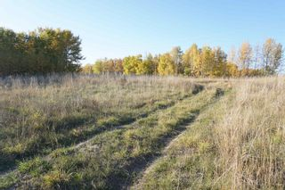 Photo 15: 31 53214 RR13: Rural Parkland County Rural Land/Vacant Lot for sale : MLS®# E4266458