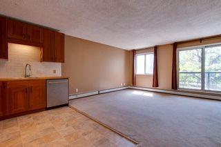 Photo 9: 303 10432 76 Avenue NW in Edmonton: Zone 15 Condo for sale : MLS®# E4262439