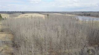 Photo 6: : Rural Strathcona County House for sale : MLS®# E4240552