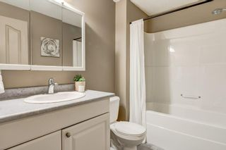 Photo 24: 47 BRIDLEPOST Green SW in Calgary: Bridlewood Detached for sale : MLS®# C4296082