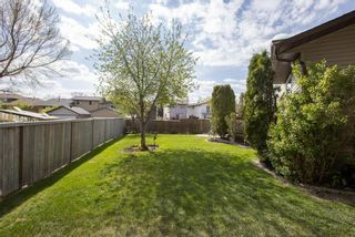 Photo 33: 31 Mchugh Place NE in Calgary: Mayland Heights Detached for sale : MLS®# A1111155