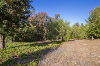 Photo 5: SANTEE Property for sale: 8540 S Slope Dr