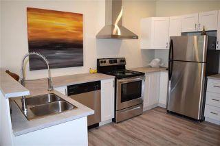 Photo 7: 631 Castle Avenue in Winnipeg: East Elmwood Residential for sale (3B)  : MLS®# 1926170