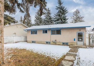 Photo 18: 2211 39 Street SE in Calgary: Forest Lawn Detached for sale : MLS®# A1085601