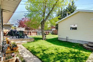Photo 27: 11 Wellington Place SW in Calgary: Wildwood Detached for sale : MLS®# A1112496