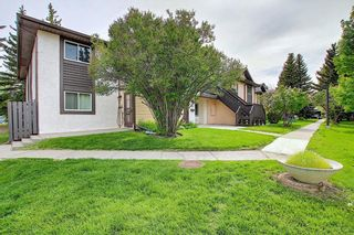 Photo 37: 139 Cedar Springs Gardens SW in Calgary: Cedarbrae Row/Townhouse for sale : MLS®# A1059547