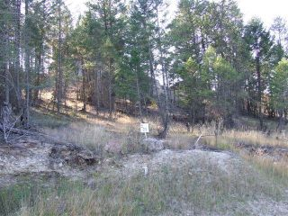 Photo 5: Lot 21 PINERIDGE MOUNTAIN PLACE in Invermere: Vacant Land for sale : MLS®# 2458247