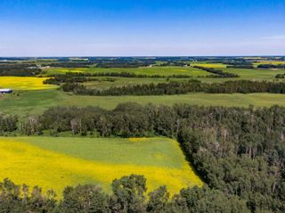 Photo 23: 461017A RR 262: Rural Wetaskiwin County House for sale : MLS®# E4255011