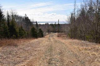 Photo 13: 24 SPRUCE Lane in Roxville: 401-Digby County Residential for sale (Annapolis Valley)  : MLS®# 202105687