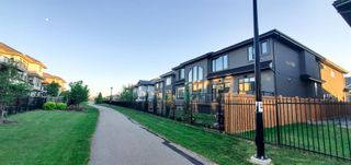 Photo 50: 3627 Westcliff Way in Edmonton: Zone 56 House for sale : MLS®# E4254045