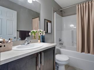 Photo 17: 7318 22 Avenue in Edmonton: Zone 53 House Half Duplex for sale : MLS®# E4240808