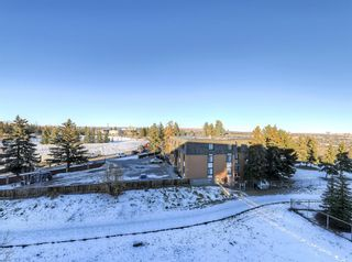 Photo 28: 404 2 HEMLOCK Crescent SW in Calgary: Spruce Cliff Apartment for sale : MLS®# A1061212