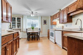 Photo 6: 3756 ULSTER Street in Port Coquitlam: Oxford Heights House for sale : MLS®# R2584347