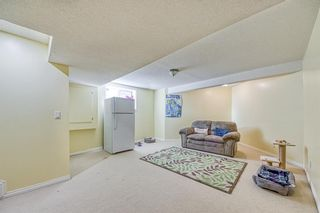 Photo 32: 23 Citadel Meadow Grove NW in Calgary: Citadel Detached for sale : MLS®# A1149022