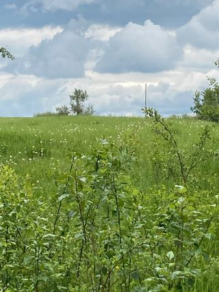Photo 2: TWP 502 RR 215: Rural Leduc County Rural Land/Vacant Lot for sale : MLS®# E4249465