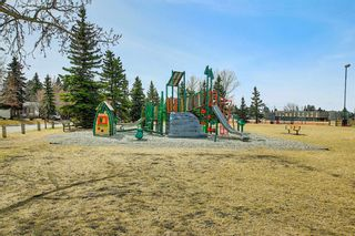 Photo 47: 5107 Forego Avenue SE in Calgary: Forest Heights Detached for sale : MLS®# A1082028