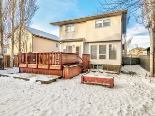 Photo 35: 9 Cambria Place: Strathmore Detached for sale : MLS®# A1051462