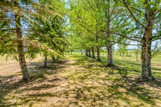 Photo 39: 251046 Rge Rd 263: Rural Wheatland County Residential Land for sale : MLS®# A1117285