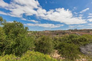Photo 25: Residential for sale : 3 bedrooms : 5570 COYOTE CRT in CARLSBAD