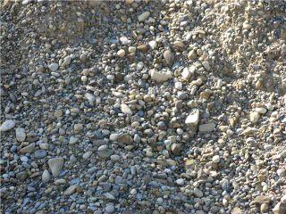 Photo 8: WEST OF BOTTREL in COCHRANE: Rural Rocky View MD Rural Land for sale : MLS®# C3492220