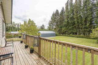 """Photo 31: 5105 237 Street in Langley: Salmon River House for sale in """"Salmon River"""" : MLS®# R2602446"""