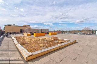 Photo 23: 403 6608 28 Avenue in Edmonton: Zone 29 Condo for sale : MLS®# E4238044