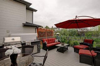 Photo 28: 100 Mt Selkirk Close SE in Calgary: McKenzie Lake Detached for sale : MLS®# A1063625