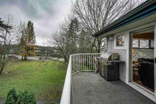 "Photo 35: 303 20556 113 Avenue in Maple Ridge: Southwest Maple Ridge Condo for sale in ""MAPLES"" : MLS®# R2519734"