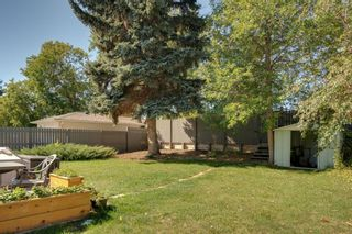 Photo 43: 8415 7 Street SW in Calgary: Haysboro Detached for sale : MLS®# A1143809